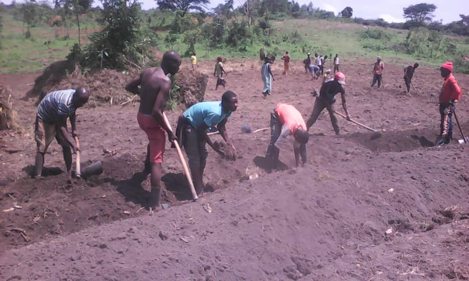 Xavier Project's new agriculture initiative in Rwamwanja Refugee settlement